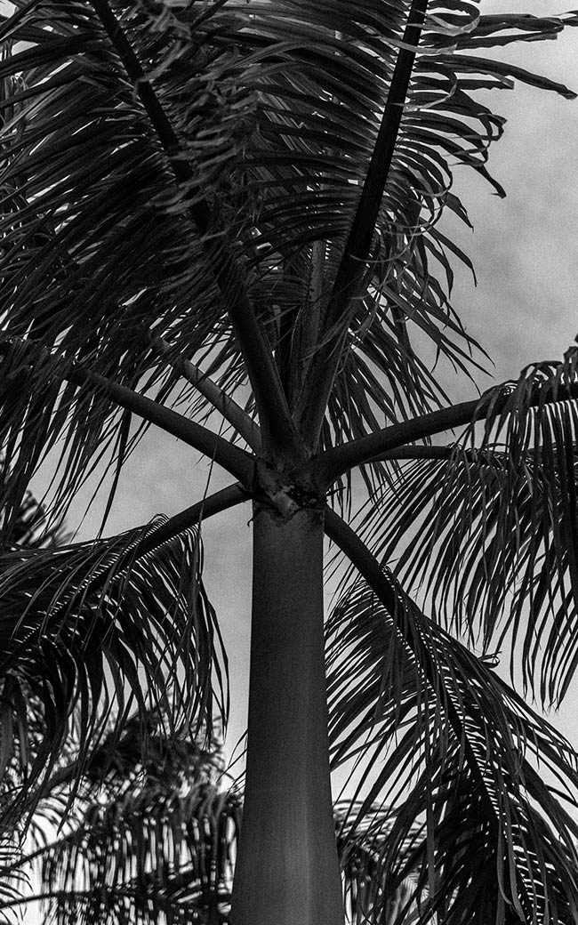 Studio-Christian-Dueckminor-Playground-Gallery-Fotos-10x16-01