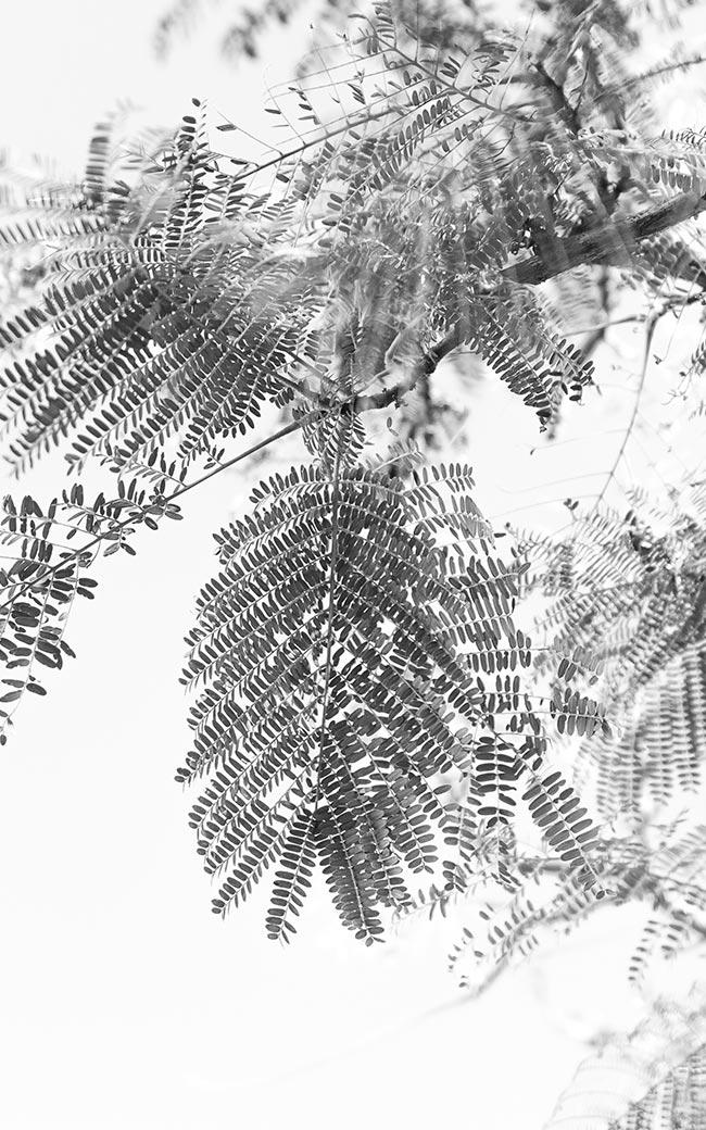 Studio-Christian-Dueckminor-Playground-Gallery-Fotos-10x16-13
