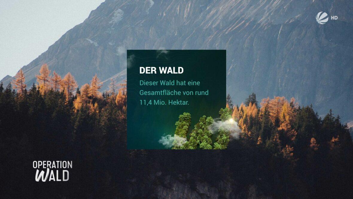 Studio-Christian-Dueckminor-Sat1-Operation-Wald-Infotafel