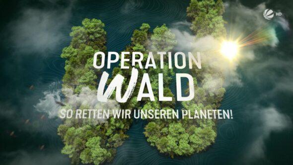 Studio-Christian-Dueckminor-Sat1-Operation-Wald-Styleframe-04
