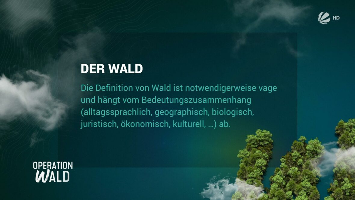 Studio-Christian-Dueckminor-Sat1-Operation-Wald-Vollbildtafel